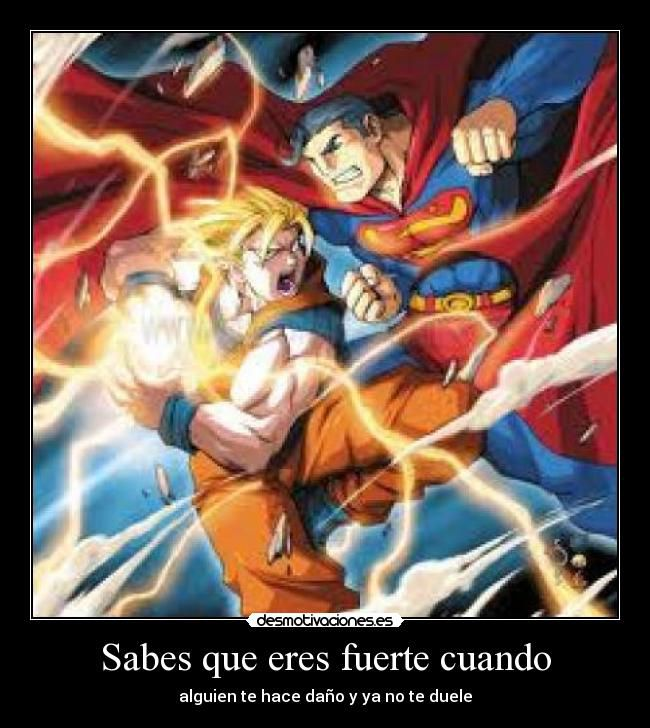 !Homenaje a Dragon Ball Z  +10!