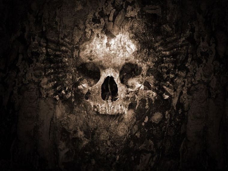 Imagenes De Calaveras (Wallpapers)