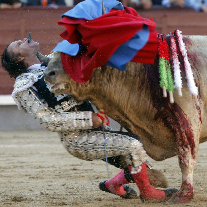 video del torero corneado