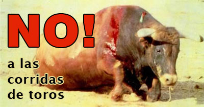 Matanza de Toros Video CQC Informe